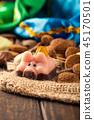 Dutch holiday Sinterklaas 45170501