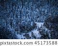 snow, mountain, snowy 45173588
