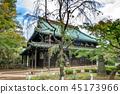 Gōtoku-ji, beckoning cat, temple 45173966