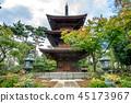 Gōtoku-ji, beckoning cat, temple 45173967