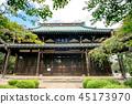 Gōtoku-ji, beckoning cat, temple 45173970