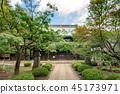 Gōtoku-ji, beckoning cat, temple 45173971