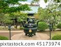 Gōtoku-ji, beckoning cat, temple 45173974