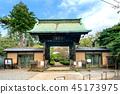 Gōtoku-ji, beckoning cat, temple 45173975