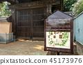 Gōtoku-ji, beckoning cat, temple 45173976