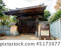 Gōtoku-ji, beckoning cat, temple 45173977
