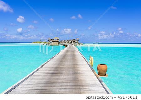 美麗的珊瑚礁海洋在印度洋 45175011