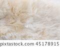 Anumal fur textured 45178915