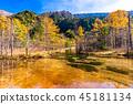 長野จังหวัดนากาโน่秋の上高地 ・ Tashiro Pond 45181134