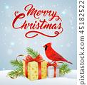 Christmas, cardinal, bird 45182522