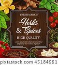 Food seasoning herbs and spices, vector condiments 45184991