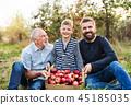 apple, harvest, fruit 45185035
