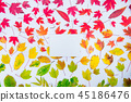 leaves, leaf, background 45186476