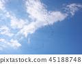 ท้องฟ้าเป็นสีฟ้า,ท้องฟ้า,นก 45188748
