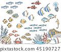 ปลาในน้ำ 45190727