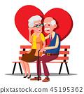 couple, bench, senior 45195362