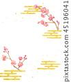ume, Japanese apricot, japanese apricot flower 45196041