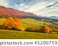 fall, autumn, hill 45200759