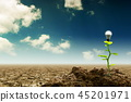 energy, tree, sustainable 45201971