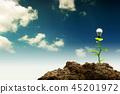 energy, tree, sustainable 45201972