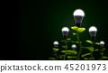 energy, tree, sustainable 45201973