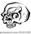 skull, vector, bone 45203385