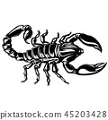 vector of a Scorpion illustration on isolated background 45203428
