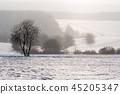 Falling snow in the winter landscape 45205347