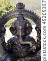 Ganesha - Hindu God 45205357