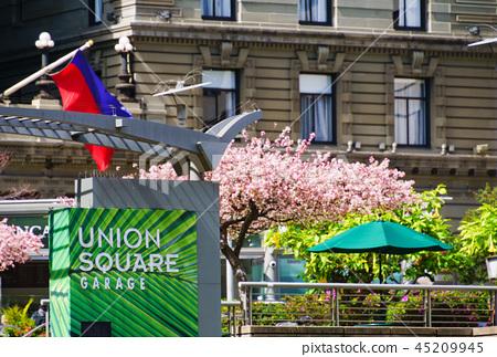 [USA] Union Square 45209945