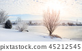 Winter scene in Central Kentucky 45212545