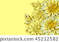flower, dahlia, daisy 45212582