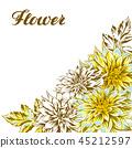 flower, dahlia, daisy 45212597