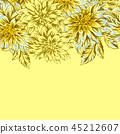 flower, dahlia, daisy 45212607