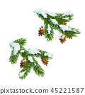Christmas pine and fir branches in snow 45221587