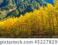 長野長野縣Kamikochi,Karamatsu和北阿爾卑斯山在秋天 45227829