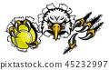 eagle, tennis, vector 45232997
