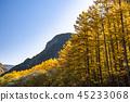 長野長野縣Kamikochi,Karamatsu和北阿爾卑斯山在秋天 45233068