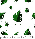 Green leaf background 45238292