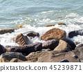 The rock beach 45239871