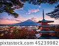 Mt. Fuji with Chureito Pagoda and red leaf 45239982
