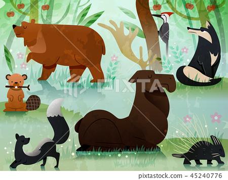 Forest Animals Illustration 45240776