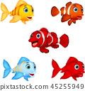 Cartoon fish collection set 45255949