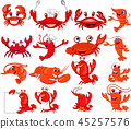 Cartoon shrimp and crab collection set 45257576
