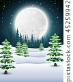 winter night background with pine trees at night 45259942