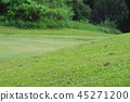 Perfect grass golf course field at hk 45271200
