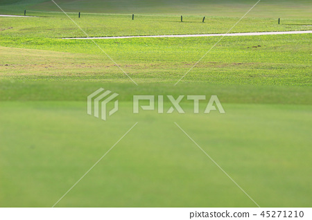 Perfect grass golf course field at hk 45271210