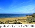 이리 오모테 섬 마레의 바닷가 45283004