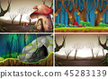 Fairy tale forest background 45283139