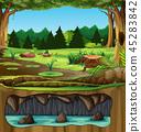 green, nature, vector 45283842